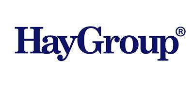 haygroup-patty-shull-partner-logos